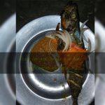 Poisson braisé chez Mami Fish